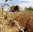 incepe plata subventiei agricole pentru acest an