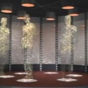 la institutul de fizica si inginerie nucleara de la magurele se va experimenta teleportarea