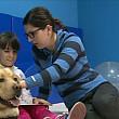 premiera in romania terapia cu animale introdusa intr-o scoala publica