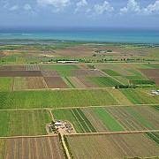 terenurile agricole investitii la sigur in romania