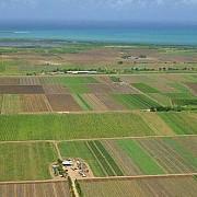 strainii detin 15 din suprafata agricola a romaniei