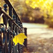 se schimba vremea ce ne asteapta la inceput de octombrie