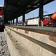 canicula da peste cap traficul feroviar