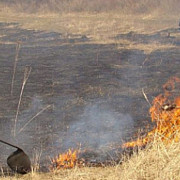 incendiu de vegetatie uscata pe muntele zanoaga