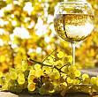 romania si moldova doua mari medalii de aur la concursul international de vinuri bucuresti 2016