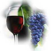 vinul rosu impiedica aparitia surzeniei