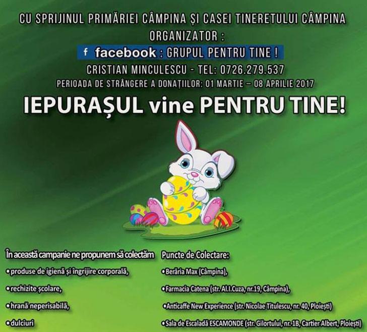 Campania de colectare Iepurasul vine pentru tine!