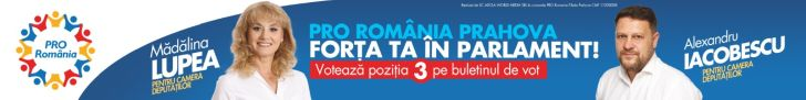 Pro Romania- Forta ta in Parlament