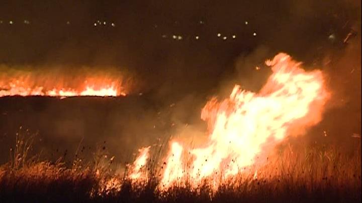 incendiu_delta_dunarii