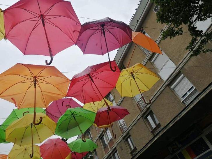 foto bani aruncati pe fereastra umbrele lui volosevici stricate de vremea rea